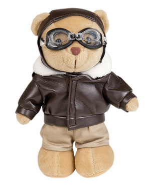 Bear Teddy pilot